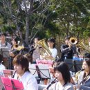 吹奏楽の日