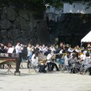 image 2011suinohi_046-jpg