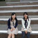 image 2012suinohi_020-jpg